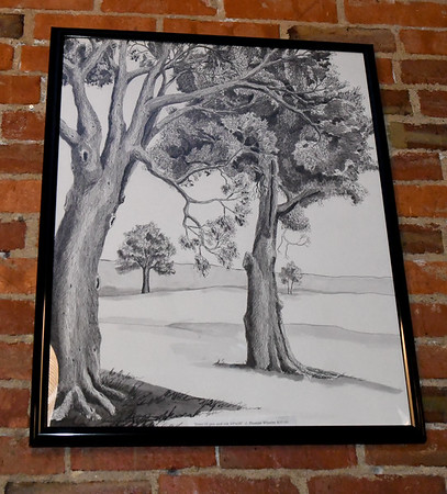 "J. Thomas Wheeler's pen and ink drawing, ""Trees IX"" hangs on a wall at Instant Karma on Wednesday.<br /> Globe 