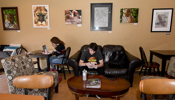 From the left: Caitlin Nelson and Caleb Walden catch up on homework against the backdrop of artist Dustin Miller's work on Wednesday afternoon at the Joplin Avenue Coffee Company.<br /> Globe | Laurie Sisk