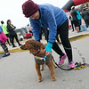 Becky Browne, Joplin, puts a finisher medal on her dog Georgie after the pair finished the Chilly 5K together on Tuesday at the Joplin Family YMCA.<br /> Globe | Roger Nomer