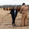 Katie Martin talks with the family's farm manager as he feeds cattle on Thursday.<br /> Globe | Roger Nomer