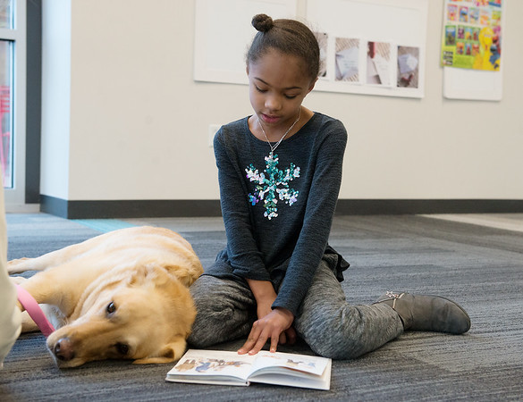 Jaiana Bruner, 8, Joplin, reads to a lounging Bella during Tuesday's Dog Day Afternoon at the Joplin Public Library.<br /> Globe | Roger Nomer