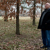 During an interview on Wednesday, Bob Fields looks over his tree farm that he will lose if a water reservoir is built on his land.<br /> Globe | Roger Nomer
