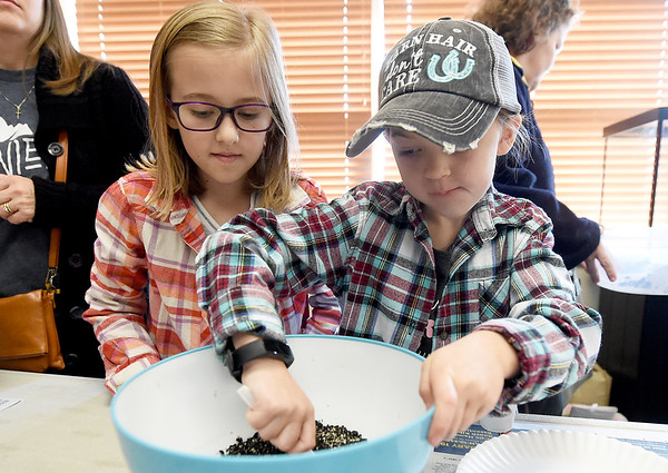 From the left: Sisters Josi Moffatt, 9 and Jacki Moffatt, 7, mix ingredients for seed bombs during a special program on Saturday at the Shoal Creek Conservation Education Center. Participants mixed clay-based unscented kitty litter, mushroom compost, flower seeds and water to form seed bombs for germination later in the spring.<br /> Globe | Laurie Sisk