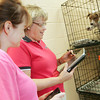 Globe/Roger Nomer<br /> As a dog leans in for a better look, Jane Cage, COO and CFO of Heartland Technology Solutions, right, shows Kelly Cruzan, rescue coordinator, the features of a new tablet computer at the Joplin Humane Society on Tuesday.