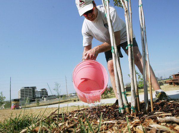 Globe/Roger Nomer<br /> Don Stock, from St. Charles, Mo., waters a tree at Cunningham Park on Monday morning.