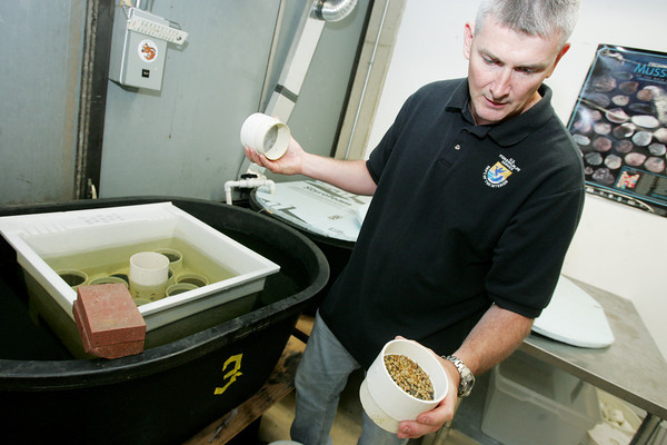 Globe/Roger Nomer<br /> Bryan Simmons talks about some of the smaller mussels being raised at Missouri State University.