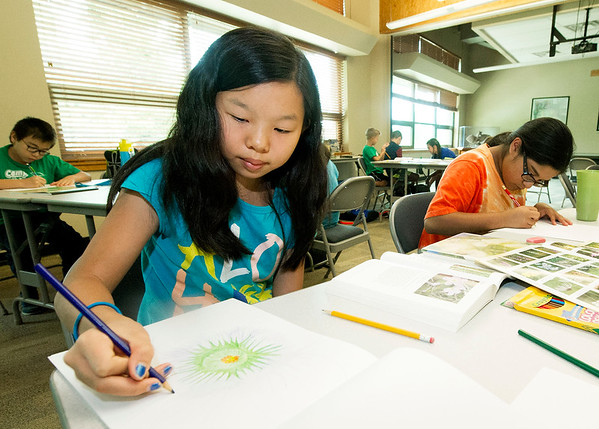 From the left: Lydia Peterson, 11 and Anna Wheeler, 14, work on drawing flowers in the style of famed artist Georgia O'Keeffe on Wednesday during the Nature's Artwork Summer Day Camp at Wildcat Glades.<br /> Globe | Laurie Sisk