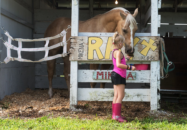 Globe/Roger Nomer<br /> Julie Bond, 6, Neosho, feeds her sister's horse Ray on Wednesday at the Newton County Fair.