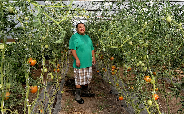 Hmong farmer Fue Yang stands inside one of his family's two high tunnels on Tuesday at the Yang family farm in Rocky Comfort.<br /> Globe | Laurie Sisk
