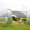 Hmong farmer Fue Yang stands near an entry to one of his family's two high tunnels on Tuesday at the Yang family farm in Rocky Comfort.<br /> Globe | Laurie Sisk
