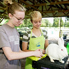 "Seventeen-year-old Maddie Capps, left and Sydney Hartless, both of the Forest Mill 4-H Club, groom Capps' New Zealand rabbit, ""Charlotte"" in preparation for judging in the meat breed on Tuesday at the Jasper County Youth Fair.<br /> Globe 