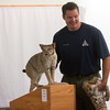 Globe/Roger Nomer<br /> Kevin Badgley, community outreach specialist with the Missouri Department of Conservation, gives a presentation on athletic animals, including the bobcat, on Wednesday at the Joplin Public Library.