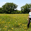 Missouri Prairie Foundation Executive Director Carol Davit looks across the various species of prairie flowers and grasses last week at Noah Brown Prairie. Dedication of the Prairie will be July 22.<br /> Globe | Laurie Sisk