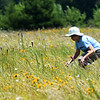 Eleven-year-old Jamie Leahy stalks a Katydid last week on the Noah Brown Prairie. Dedication of the Prairie will be July 22.<br /> Globe | Laurie Sisk