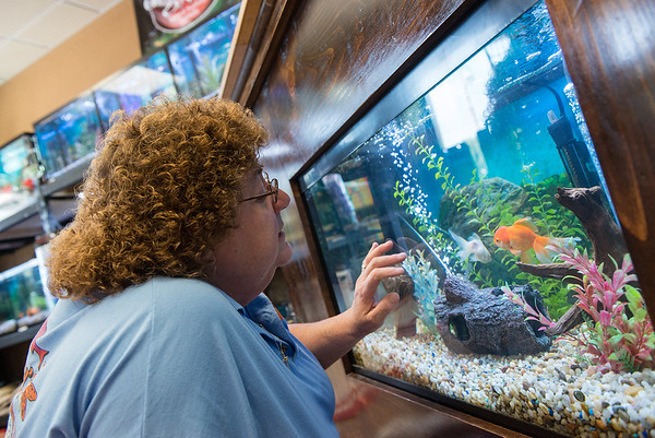 Globe/Roger Nomer<br /> Becky Burress talks with her fancy goldfish on Wednesday.