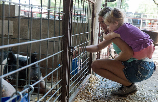 Globe/Roger Nomer<br /> Sydney Teegarden, 16, Carthage, and Lucy Youngblood, 3, Carthage, check out the pigs on Thursday at the Jasper County Youth Fair in Carthage.