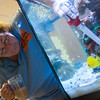 Globe/Roger Nomer<br /> Becky Burress feeds fish on Wednesday morning.