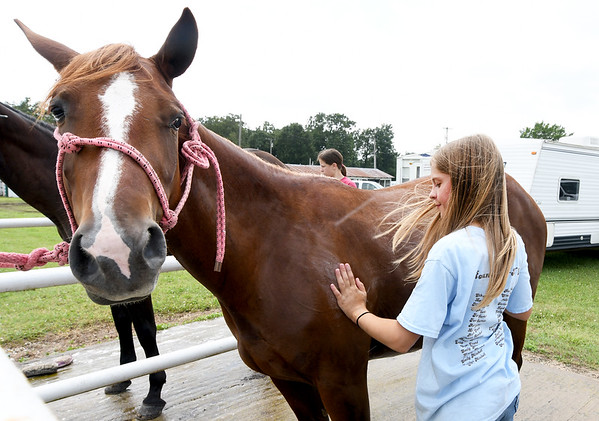 """Eleven-year-old Maelyn Wright, of Neosho, washes her pony quarter horse, """"Shasta,""""  on the first day of the Newton County Fair on Wednesday in Neosho.<br /> Globe   Laurie Sisk"""