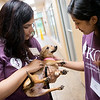 Globe/Roger Nomer<br /> Kansas City University of Medicine and Biosciences Joplin students Harmeet Kaur, Toronto, left, and Zerin Kashem, New York, pet Boston on Thursday while volunteering at the Joplin Humane Society.