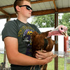 Layne Hinz, 15, of Neosho, holds a turkey his sister, Kyla Honz, 18, plans to show on the first day of the Newton County Fair on Wednesday in Neosho.<br /> Globe | Laurie Sisk