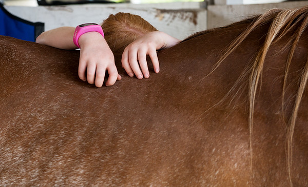 Chloe Wood, 10, Neosho, rests with her horse Strawberry on Wednesday at the Newton County Fair.<br /> Globe | Roger Nomer