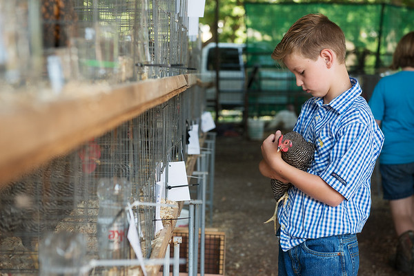 Kelby Buffer, 9, Carl Junction, holds his chicken Speck before poultry judging on Wednesday at the Jasper County Youth Fair.<br /> Globe | Roger Nomer