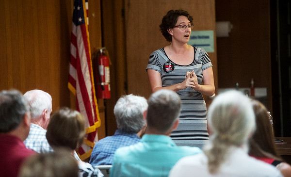 Crystal Brigman Mahaney, regional communication director for We Are Missouri, talks to a meeting of the SWMO Democrats on Wednesday at the Hall of the Laborers Local.<br /> Globe   Roger Nomer