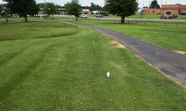 Prairie growth is seen on the left of the cart path and proposed growth area marked by flags is seen on the right at Schifferdecker Golf Course.<br /> Globe | Roger Nomer