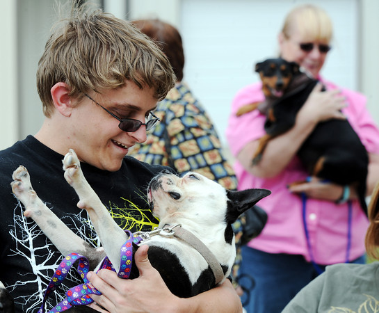Globe/T. Rob Brown<br /> Allan Carey, of Reeds, babies his cousin's Boston terrier Tinkerbell as they wait for their names to be called for the animal's vaccination outside the Animal Adoption & Resource Center.