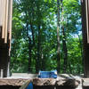 Globe/Roger Nomer<br /> The large windows in Thorncrown Chapel are designed to bring nature into the building.