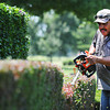 Globe/T. Rob Brown<br /> Jesus Barron, groundskeeper at Twin Hills Country Club, trims a hedge Thursday afternoon, June 20, 2013.