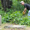 Clyde Hood, chairman of the Jasper County Cemetery Preservation Board, clears brush at the site of the old Alexandria Cemetery near Carterville on Wednesday.<br /> Globe | Laurie Sisk