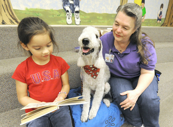 "Ava Herrera, 7, reads to ""Ricky,"" a Bedlington Terrior and his handler/owner Debbie Miller during Dog Day Afternoon on Tuesday afternoon at the Joplin Public Library. The program allows children to read to trained therapy dogs, all of which are members of Therapy Dogs, Inc., a national association insuring therapy dogs.<br /> Globe 