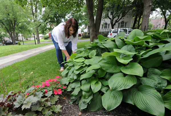 MaryAnne Neff removes weeds from her garden at 318 South Sergeant in historic Murphysburg. The house, known as the Frye-Basom House, was built in 1891. Neff said she has lived there about 10 years.<br /> Globe | Laurie Sisk