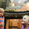 Globe/Roger Nomer<br /> Ben, 3, and sister Katie Navarro, Neosho, check out life underwater at the Neosho Fish Hatchery Visitors Center on Wednesday morning.