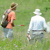 Lepidopterist Phil Koenig, right and Kevin Firth, left, look for various species of butterflies and moths during the Missouri Prairie Association's BioBlitz on Saturday at Linden's Prairie near Mount Vernon.<br /> Globe | Laurie Sisk