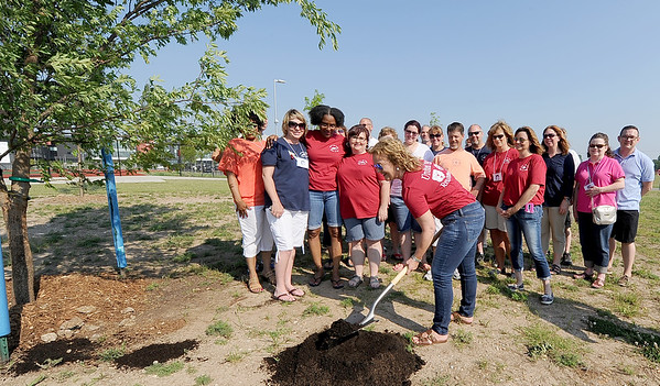 Flanked by classmates, Valerie Paul-Wilson, co-president of the Joplin High School class of 1986, throws some dirt on a legacy tree planted on Saturday at JHS. The class, which was the first graduating class of the newly unified school, hopes other classes will follow their lead.<br /> Globe | Laurie Sisk