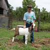 Globe/Roger Nomer<br /> Wyatt Friend pets his 4H project Shawn on Friday morning.