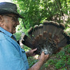 Globe/Roger Nomer<br /> Don Shilling displays the feathers from his 100th turkey on Tuesday.