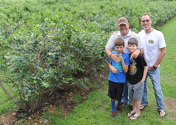 Clockwise, from the left: Twelve-year-old Connor Provenzano, James Roberston, Matthew Warren and nine-year-old Collin Warren stand between two of the 36 rows of blueberry plants at the Robertson Family Farm on Saginaw Road on Friday. Saturday marks opening day for berry pickers at the farm.<br /> Globe | Laurie Sisk
