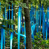 Globe/Roger Nomer<br /> Chihuly glass sculptures along the new trail at Crystal Bridges Museum of American Art highlight the Chihuly in the Forest exhibit.