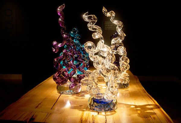 Globe/Roger Nomer<br /> Sculptures from Chihuly's Rotolo series are among his most recent work in the Chihuly in the Gallery exhibit at Crystal Bridges Museum of American Art.