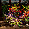 Globe/Roger Nomer<br /> Chihuly's neon sculptures are featured in the Crystal Bridges' Chihuly in the Forest exhibit.