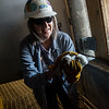 Kim Daugherty, with the environmental compliance division of Kansas City Power & Light, helps return a peregrine falcon chick to its nest on Wednesday at the La Cygne power plant.<br /> Globe | Roger Nomer