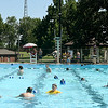 Swimmers enjoy the cool waters of Schifferdecker Pool on Thursday.<br /> Globe | Laurie Sisk