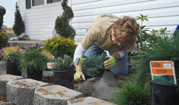 Globe/Roger Nomer<br /> Linda Heman plants landscaping in front of 2630 Wall during a work day in early March.