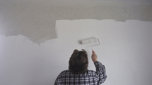 Globe/Roger Nomer<br /> Laurie Behm puts down the first coat of paint in the kitchen of 2630 Wall during a work day in mid-November.