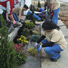 Globe/Roger Nomer<br /> Volunteers with the Justice League plant landscaping in front of 2630 Wall during a work day in early March.
