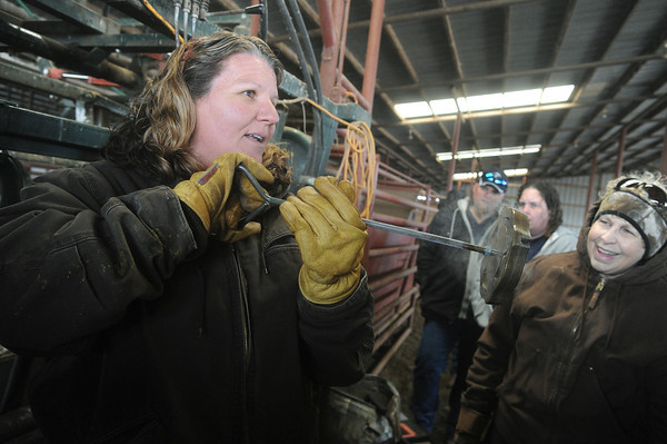 Globe/Roger Nomer<br /> Kris Callison, Vernona, shows a freeze brand to Judy Cox, Cape Fair, during a demonstration on Tuesday.