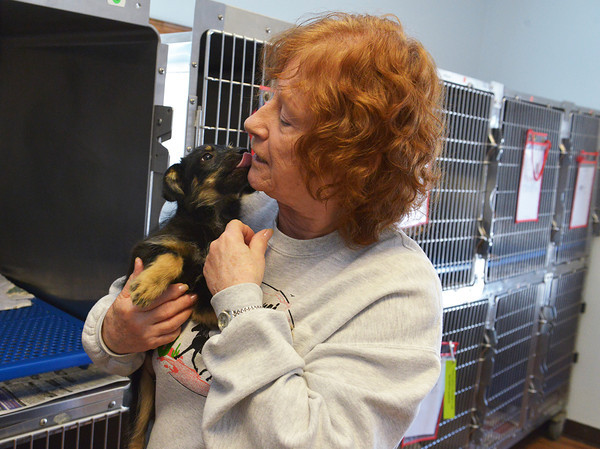 Globe/Roger Nomer<br /> Cindy Davis pets Tessa at the Carthage Humane Society on Tuesday.